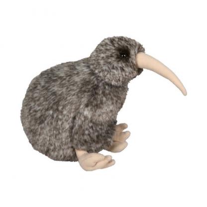 Native NZ Bird Kiwi