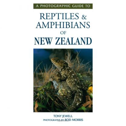 Photographic Guide Reptiles Amphibians NZ