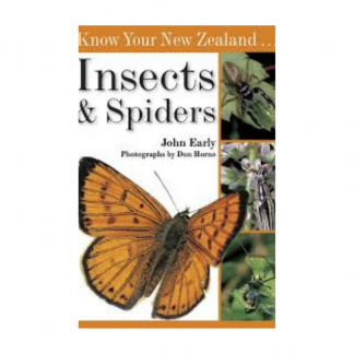Know Your NZ Insects and Spiders