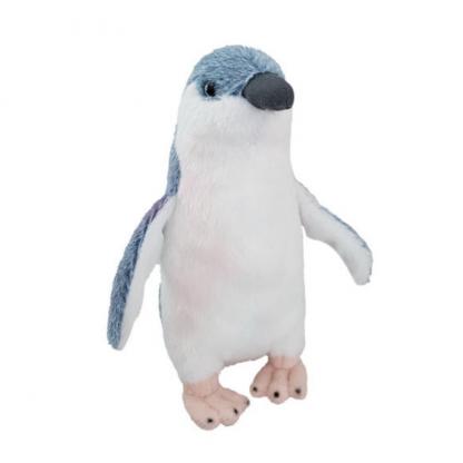 Native NZ Bird Penguin Korora