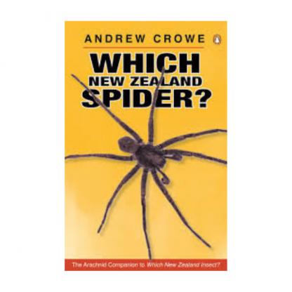 Which NZ Spider