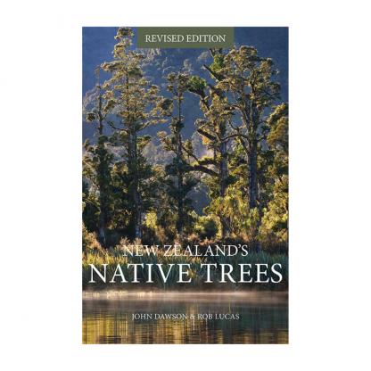 nz native trees