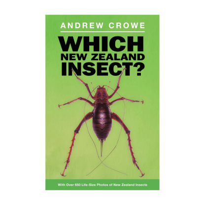 Which NZ Insect
