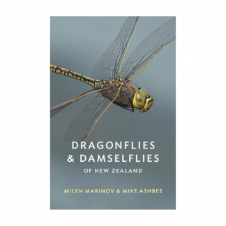Dragonflies Damselflies NZ