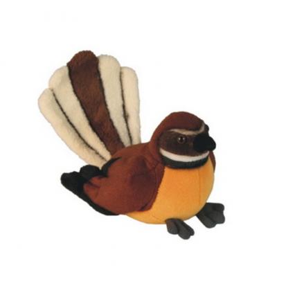 Native NZ Bird Fantail Piwakawaka
