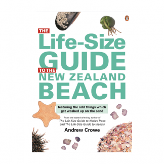 Life Size Guide to NZ Beach