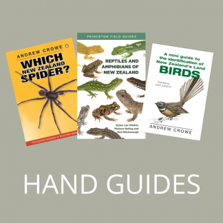 Hand Guides