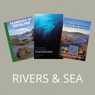Rivers & Sea