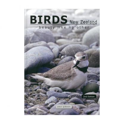 Birds NZ Beauty Like No Other