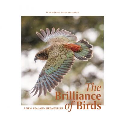 The Brilliance of BIrds. A New Zealand Birdventure