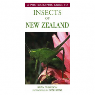 Insects NZ