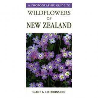 Wildflowers NZ