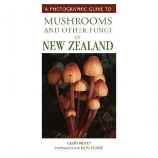 mushrooms nz