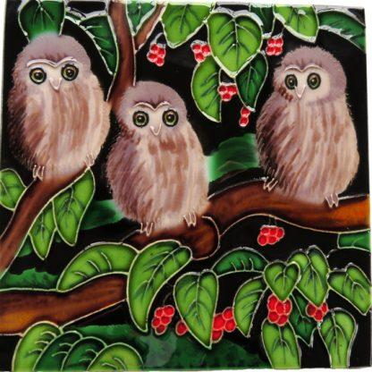 Art Tile Native NZ Bird Ruru Morepork