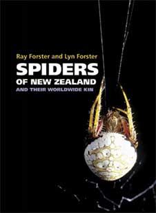 Spiders of New Zealand