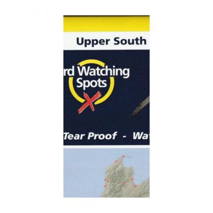 bird map upper south