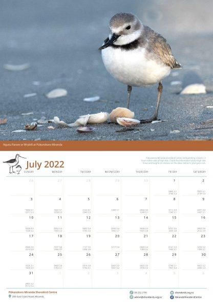 2022 Shorebird Calendar